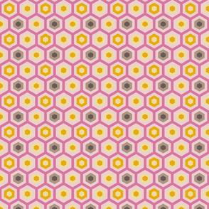 Hexagons Within Hexagons // Spring Palette