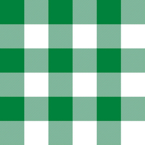 3'  buffalo check - spearmint green and white