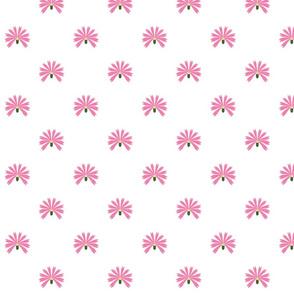 Hungarian flowers , pink carnation