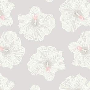 White Hibiscus on Light Grey