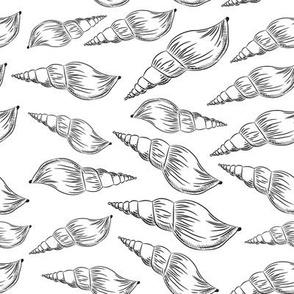 Summer concept with Unique sea shells, sea snails. Sketch black contour on white background.