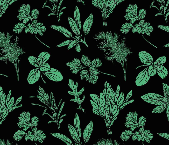 Wild grass seamless pattern. Field herbs and garden medical plants, useful seasonings. Hand-drawn