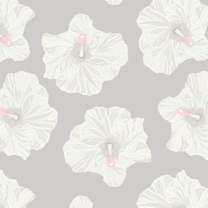 White Hibiscus on Medium Grey