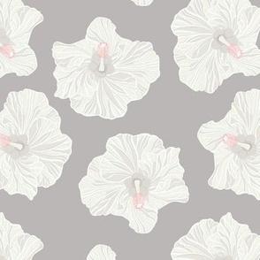 White Hibiscus on Dark Grey