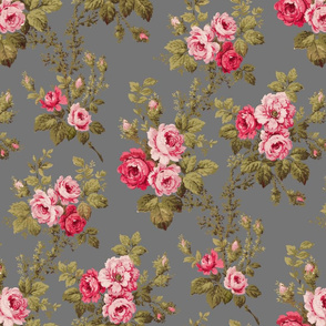 Old English Roses on Gray