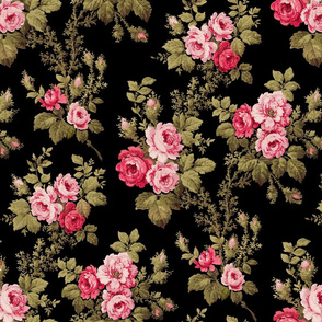 Old English Pink Roses on Black