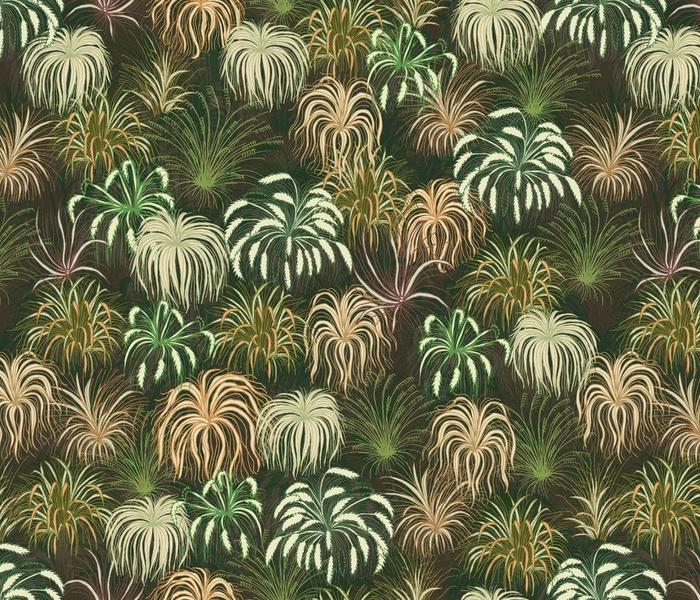 NZ Native Grasses