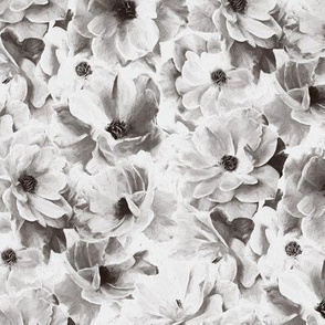 Abstracted Full Blown Roses in Monchrome Black and White - small