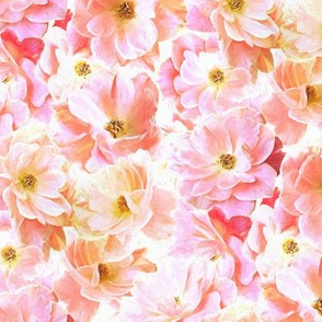 Abstracted Full Blown Roses in Candy Pink and Cream - small