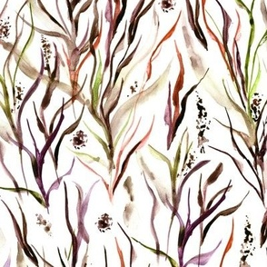 wild Tuscan grass - watercolor nature greenery a159-4