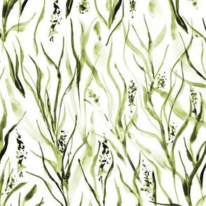 Khaki wild Tuscan grass - watercolor nature greenery a159-7