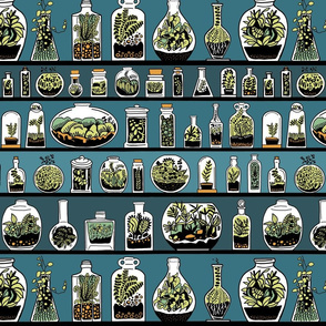Terrarium Bottles
