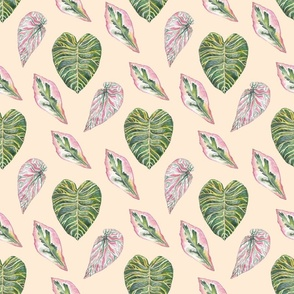 Trio tropical Leaves(large scale)