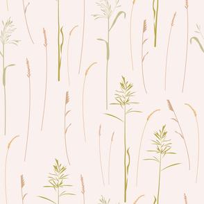 Summer field grasses
