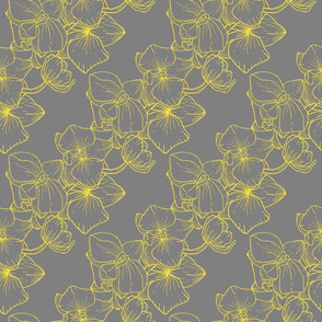 Golden Orchids on Gray