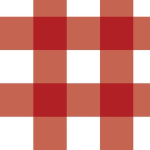 Red Gingham - Large (July 4th Collection)