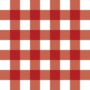 Red Gingham - Medium (July 4th Collection)
