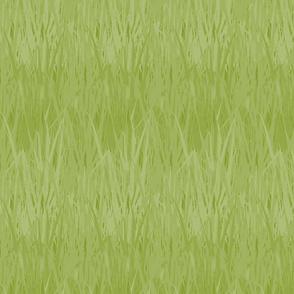 Grassy Meadow, Spring