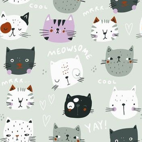 Funny cats faces on mint