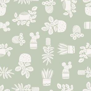 houseplants // leaf and cloud