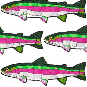 Mosaic Rainbow trout