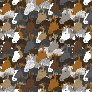 Horse herd portraits