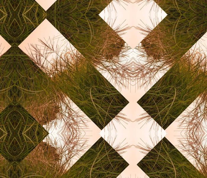 Grass and Sky Original