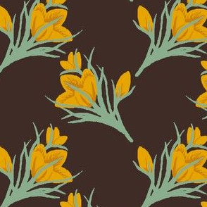 golden crocus 1ba dark brown