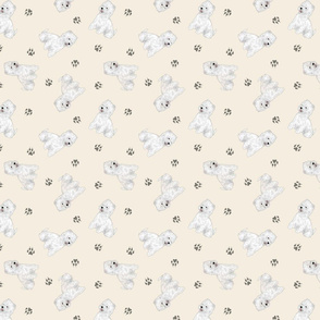 Tiny West Highland White Terrier - tan