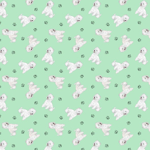 Tiny West Highland White Terrier - green