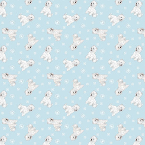 Tiny West Highland White Terrier - winter snowflakes