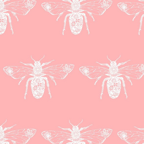 Queen Bee Pink and White