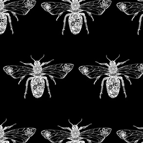 Queen Bee Black and White