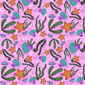 Starfish_%26_seashells