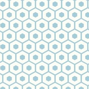 Honeycomb / white on baby blue