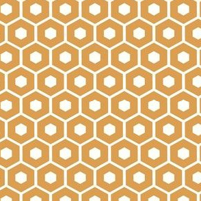 Honeycomb / honey on white