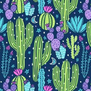 Sonoran Desert Nights (Small)