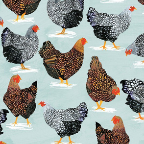 Plucky Chickens Blue - 42