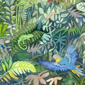 Rainforest Watercolor - Jungle flora and fauna from around the globe.