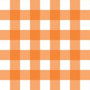 Orange Gingham - Large (Summer Collection)