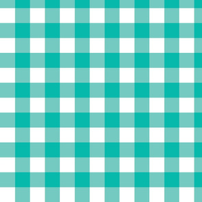 Teal Gingham - Medium (Summer Collection)