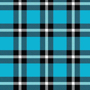 Bright Blue Plaid - Large (Summer Collection)