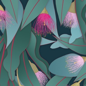 flowering gum jumbo