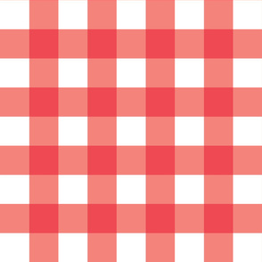 Pink Gingham - Large (Watermelon Collection)