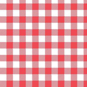 Pink Check - Medium (Watermelon Collection)
