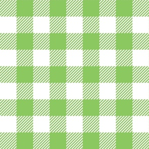 Light Green Check - Large (Watermelon Collection)