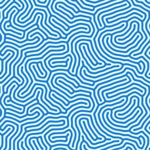 Blue maze pattern
