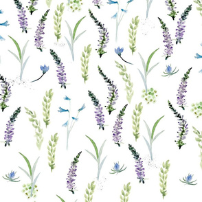 Watercolor Wild Grasses and Flowers