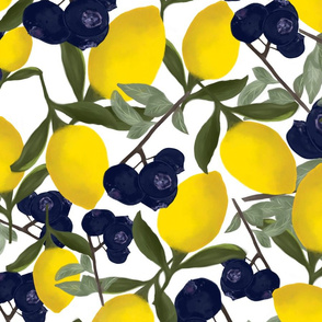 My Lemon Has the Blueberries