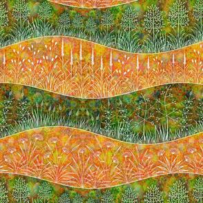WILD Grass Fields